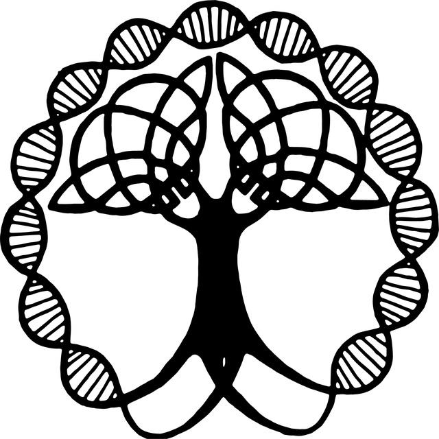 Kelte életfa szimbólum